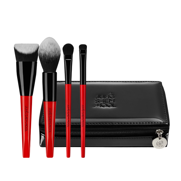 Quick Pro Brush Kit